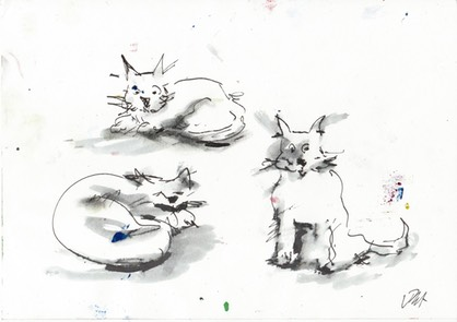 three cats sm